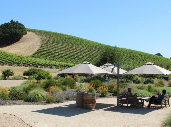niner wine estates with p6 square trio umbrellas shading an outdoor seating area